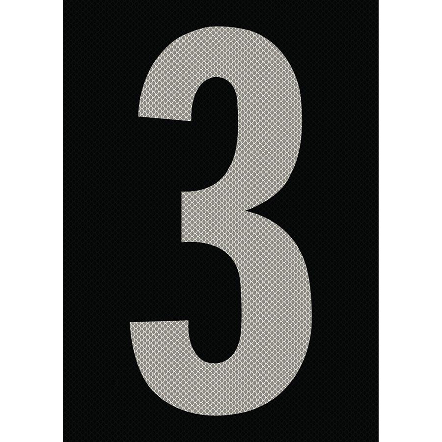 "6"" Silver on Black High Intensity Reflective ""3"""